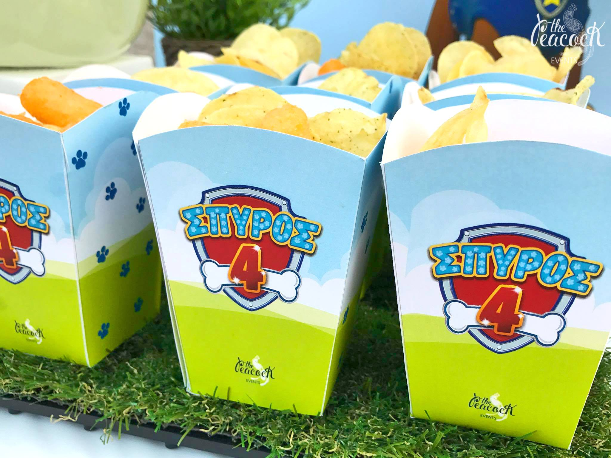Spyro S 4th Birthday Paw Patrol The Peacock Events